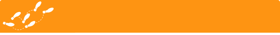 Wice CRM Software kostenloser Start